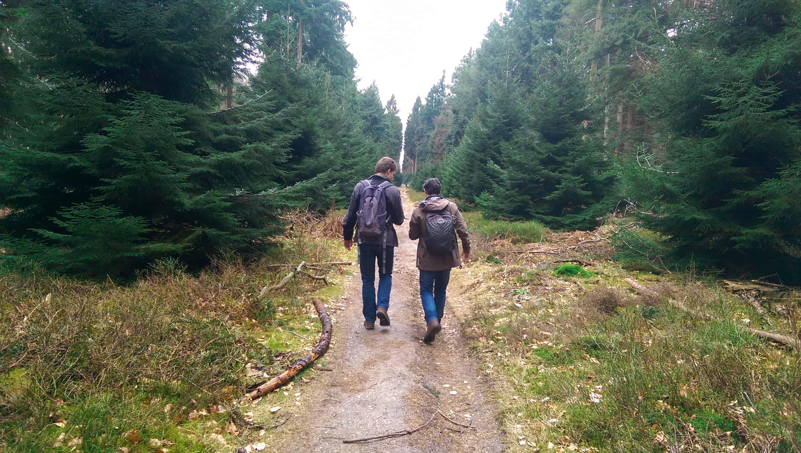 Kaapse bossen - HappyHikers