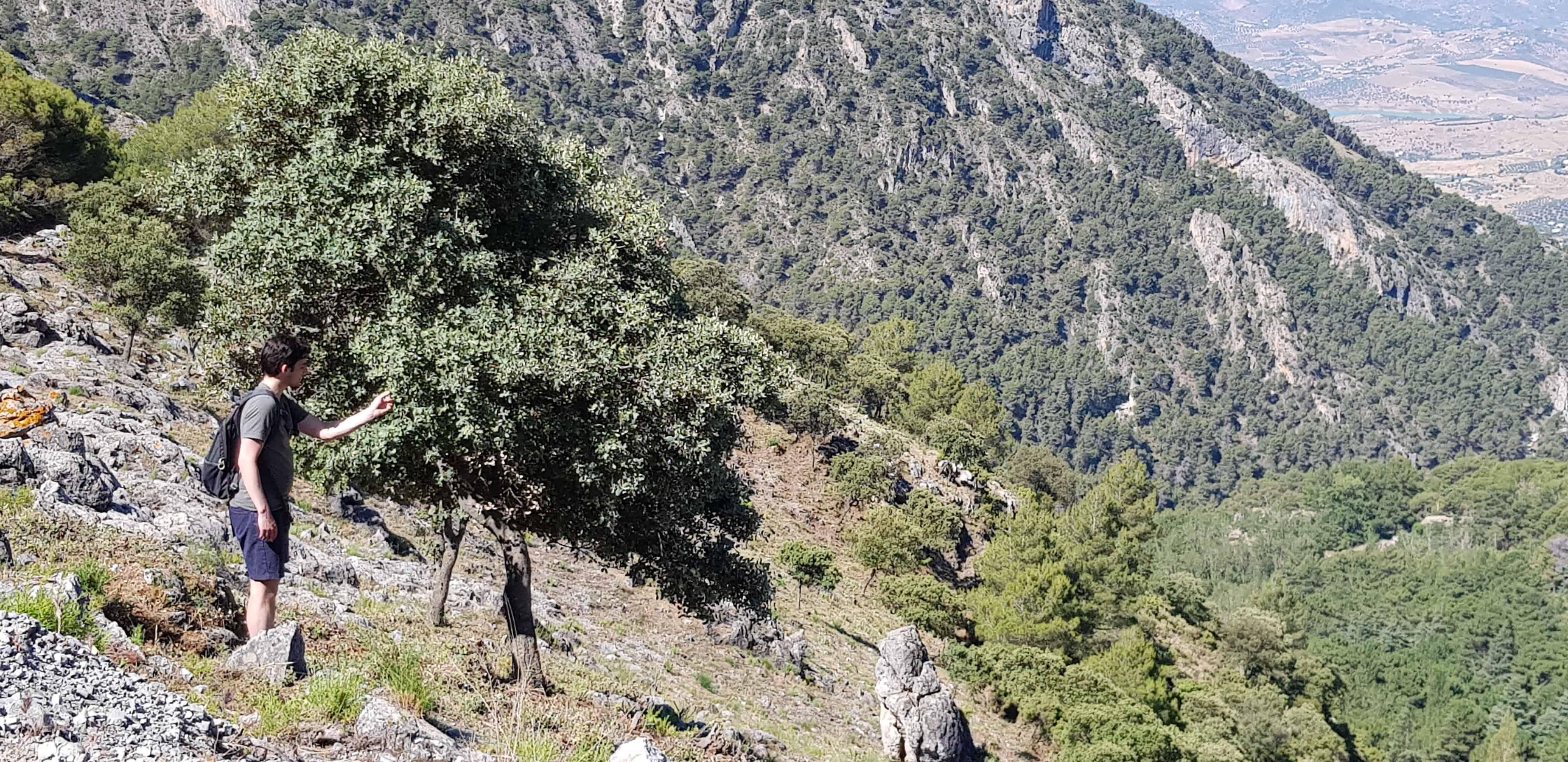 HappyHikers - nieuwe bomen ontdekken