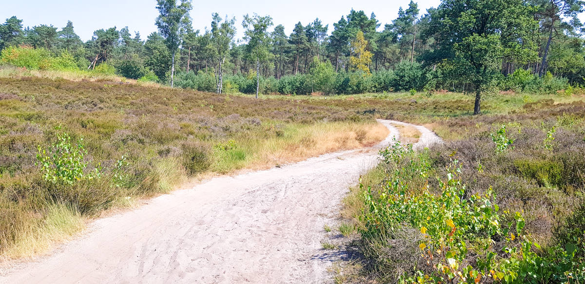 Ginkelse Heide Trekvogelpad - HappyHikers