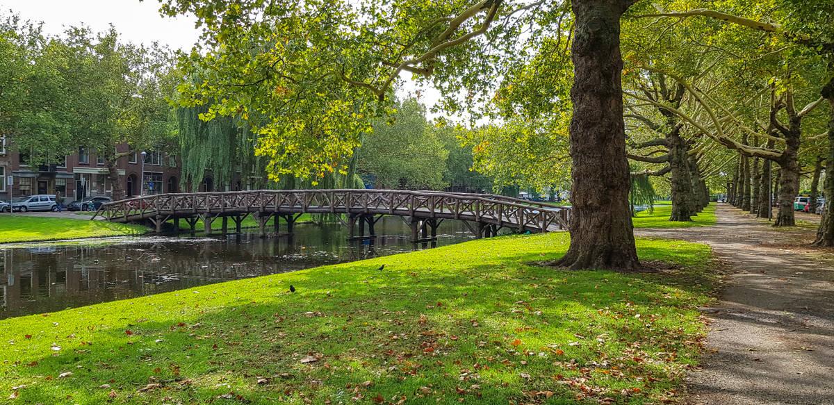 Door het park - Stadswandeling Rotterdam - HappyHikers