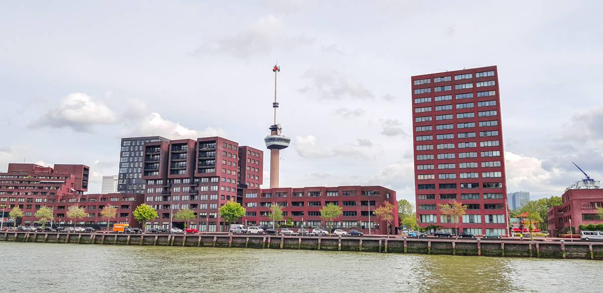 Nieuwbouw - Stadswandeling Rotterdam - HappyHikers