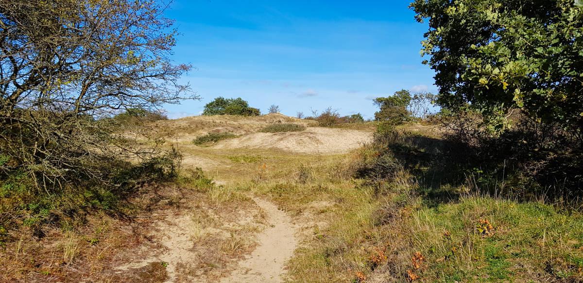 Uitzicht over zandverstuiving - De Kijfhoek en Bierlap - HappyHikers