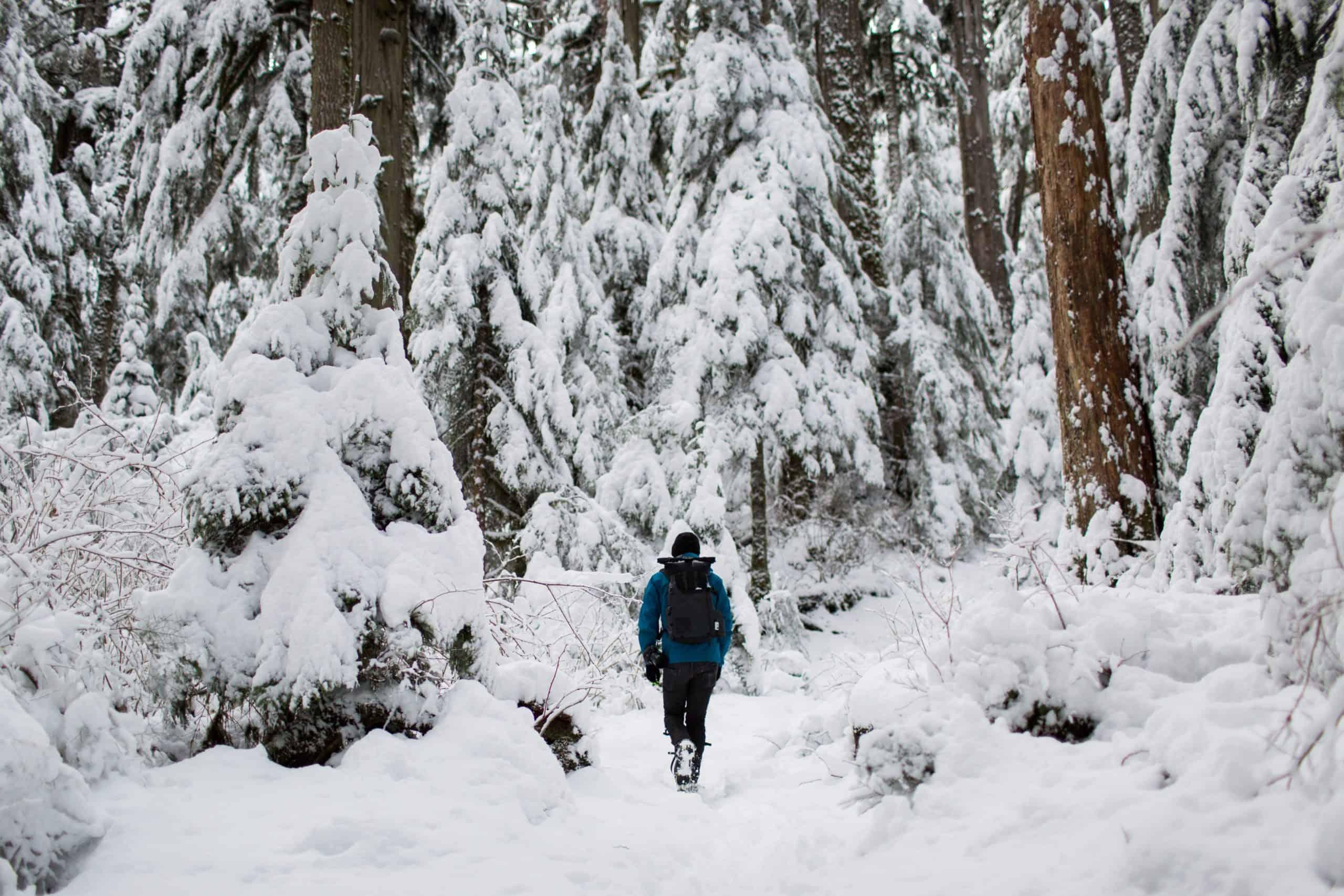 Wandelen in de winter - HappyHikers