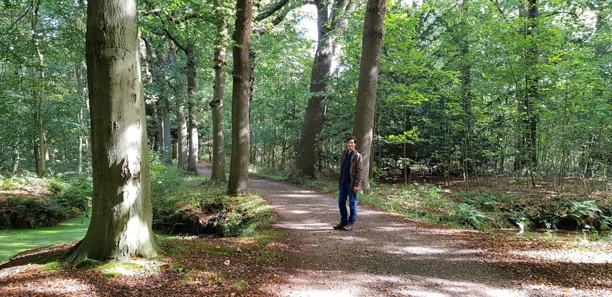 Wandelen in het bos - de Horsten - HappyHikers