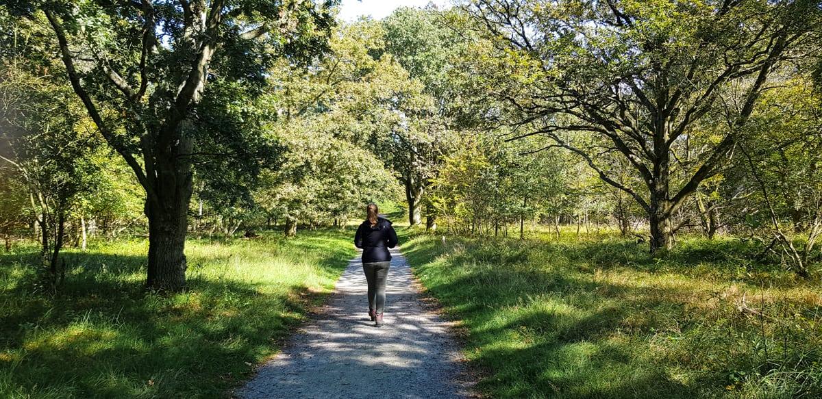 Witte route Meijendel - De Kijfhoek en Bierlap - HappyHikers