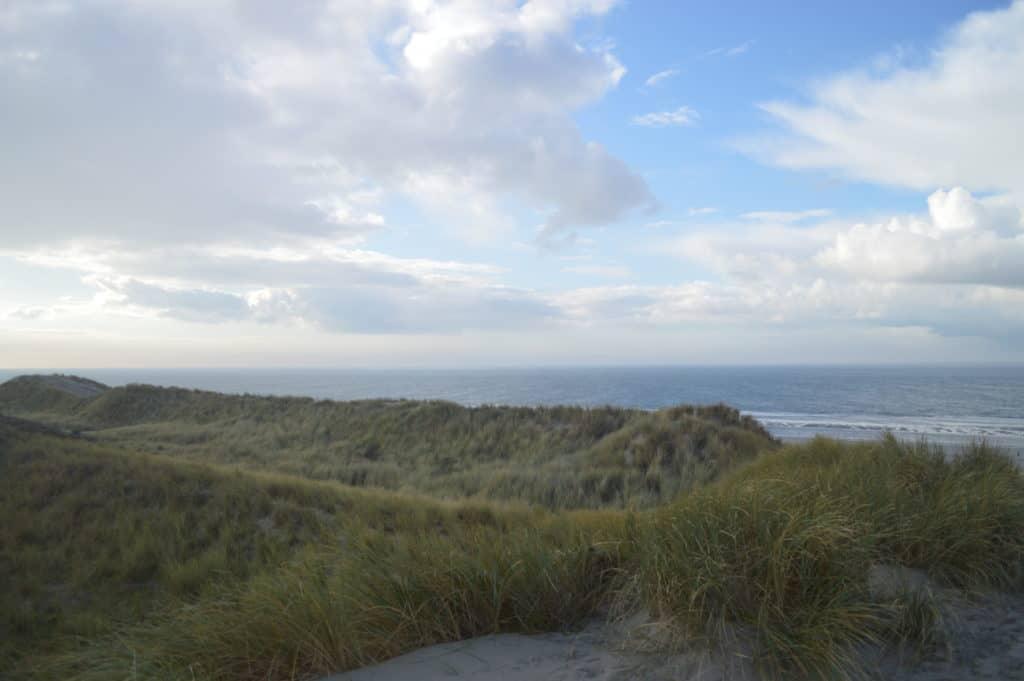 Uitzicht Waddenzee - Hollumerbos - HappyHikers