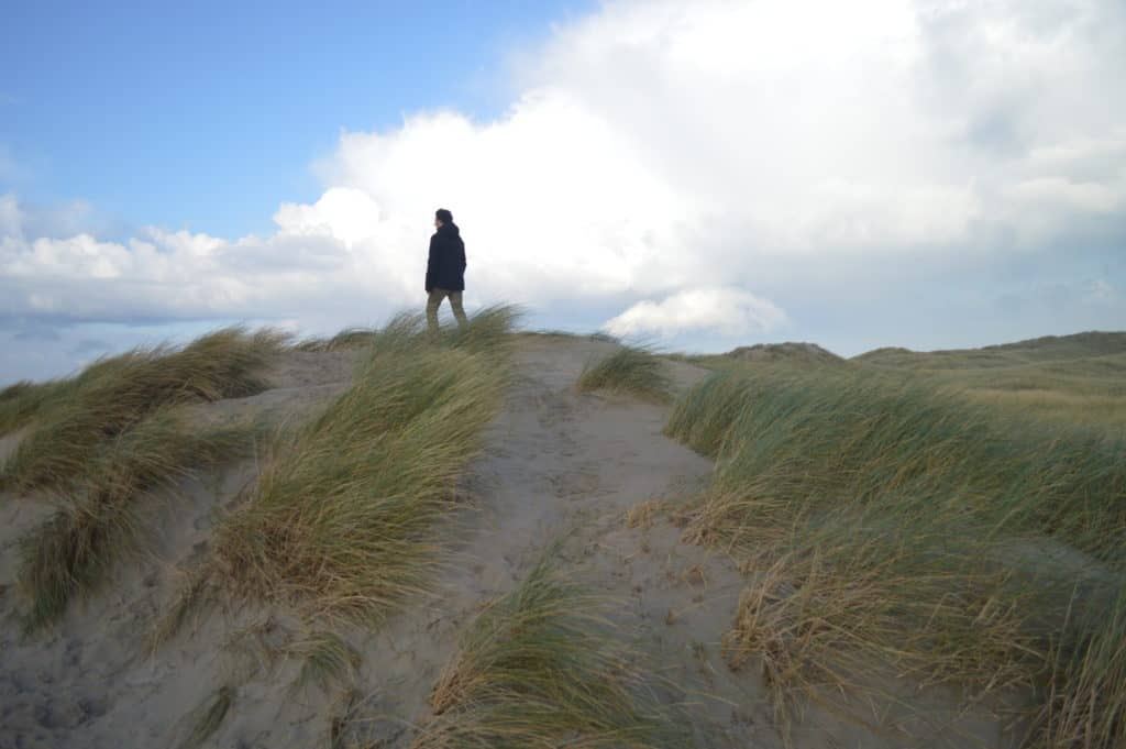 Uitzicht over Ameland - Hollumerbos - HappyHikers