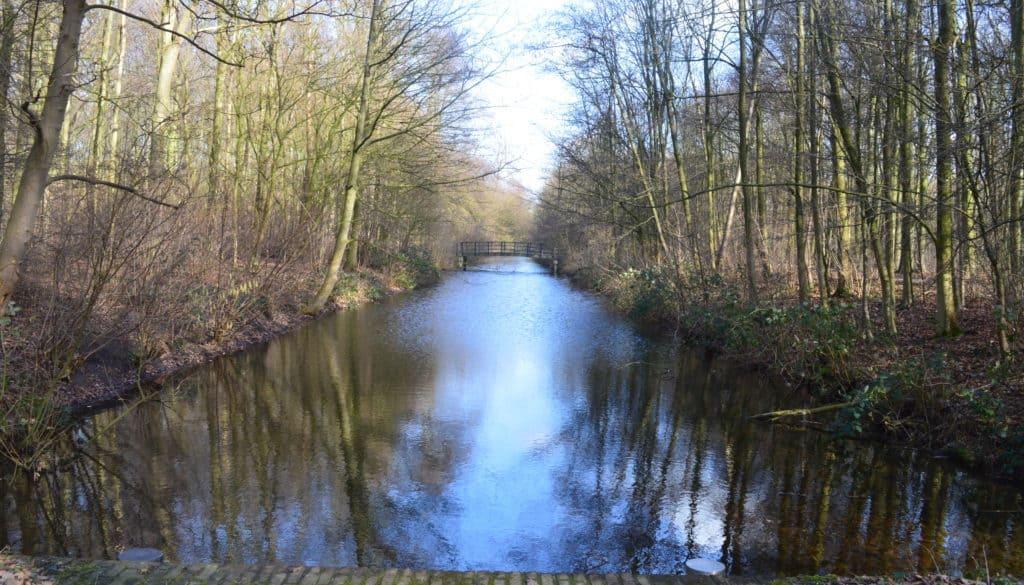 Haagse bos en Clingendael - Den Haag