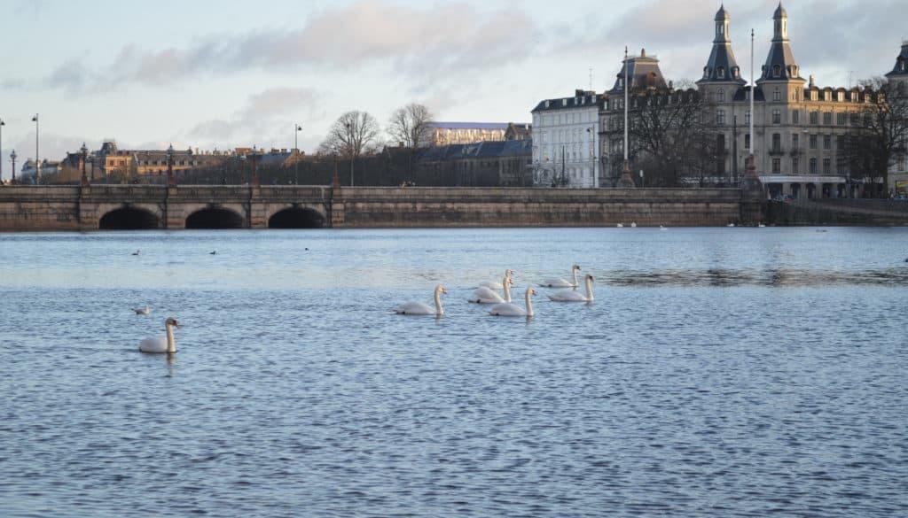 Dronning Louises Bro - Stadswandeling door Kopenhagen - HappyHikers