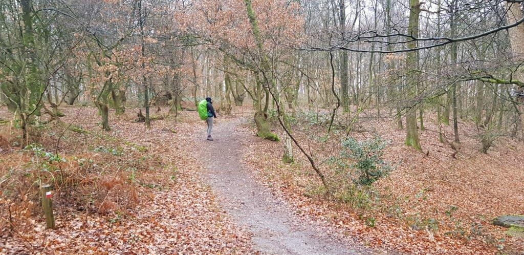 HappyHikers Rhenen naar Ede dwars over de Grebbeberg - over de Grebbeberg