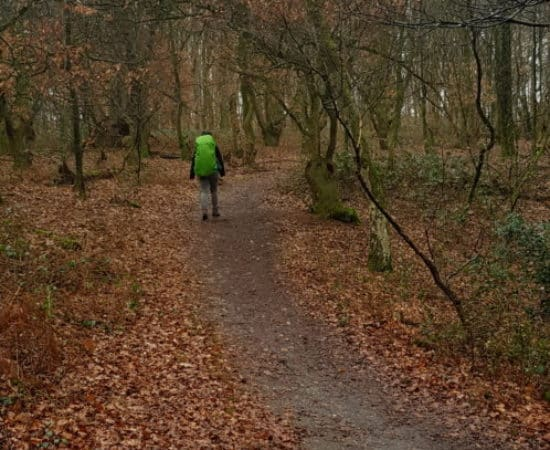 HappyHikers- Wandelen over de Grebbeberg