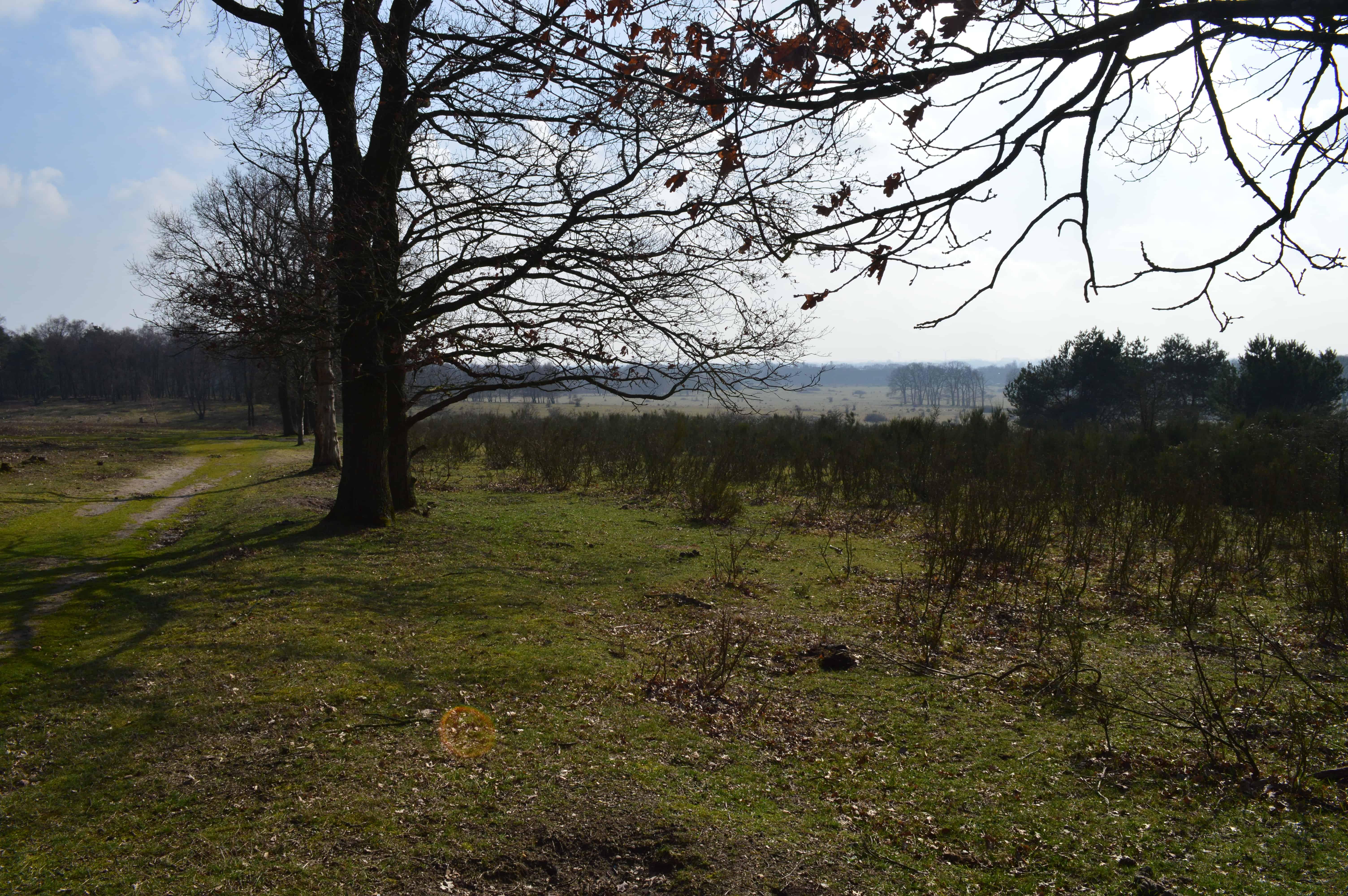 Plantage Willem 2 - Van Amerongen naar Rhenen - Trekvogelpad - HappyHikers