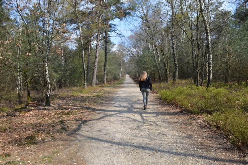 HappyHikers - wandelen door het bos