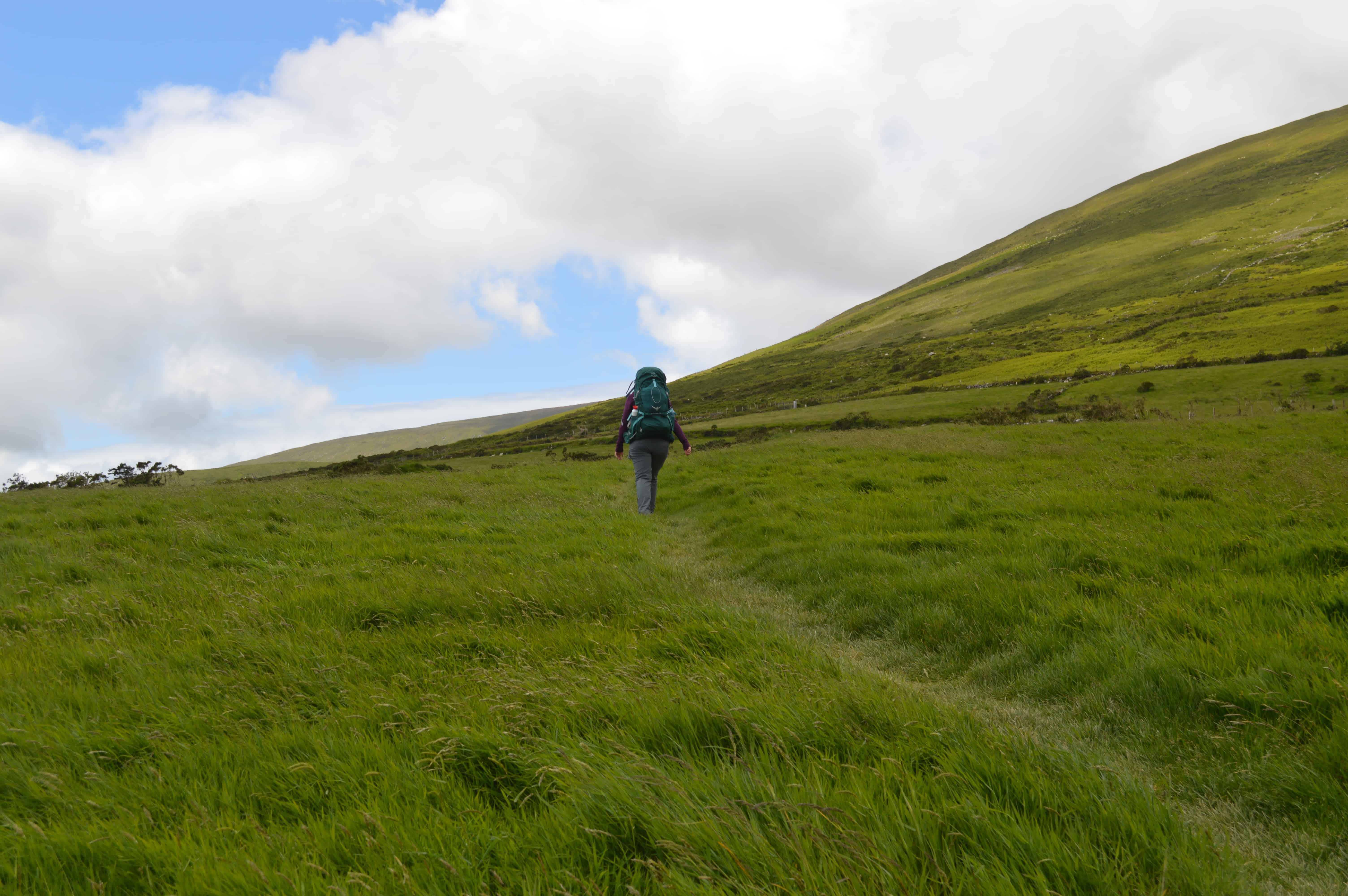 Wandelen door een veld - Dingleway - HappyHikers