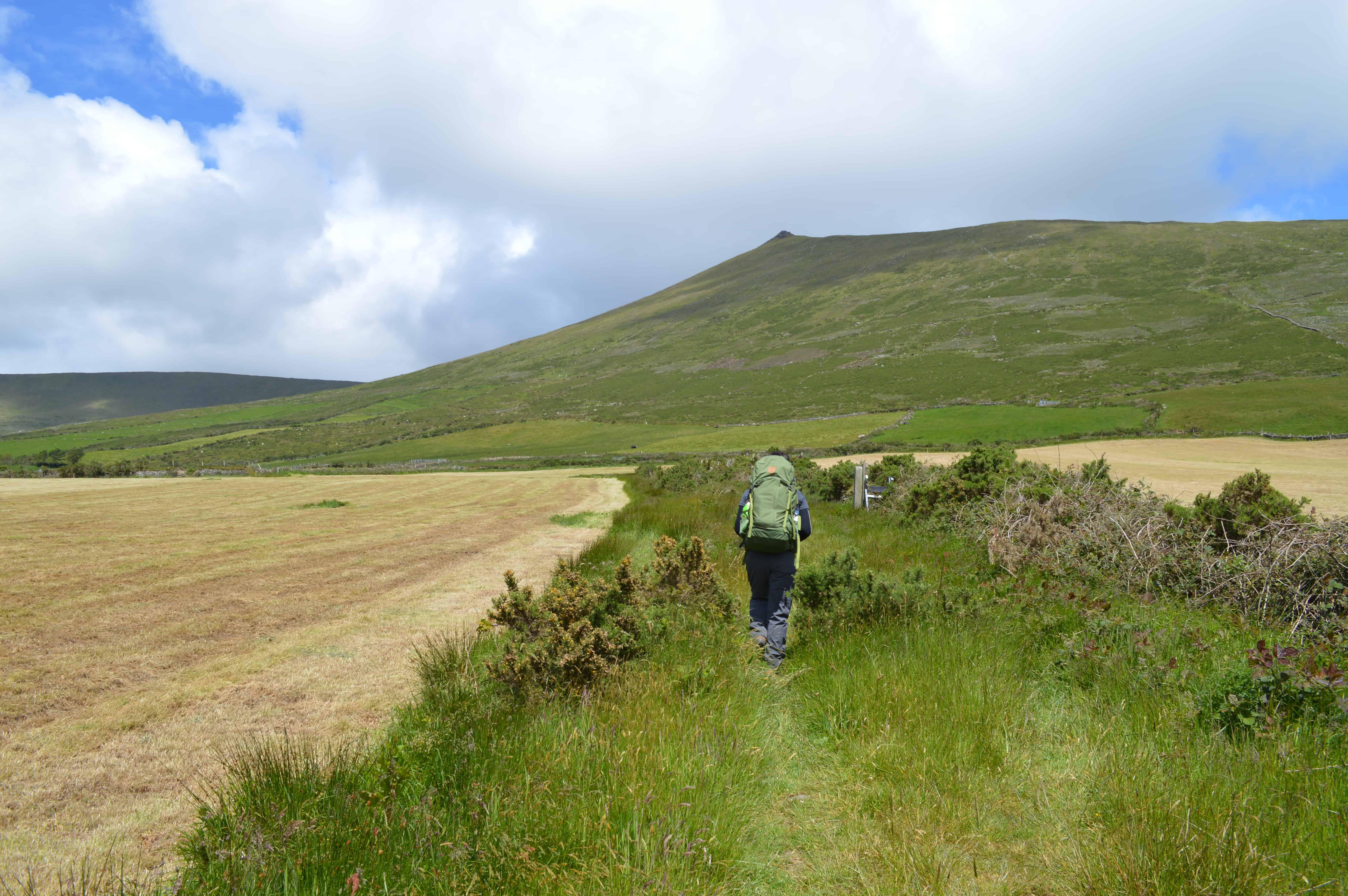 Wandelen langs een veld - Dingleway - HappyHikers
