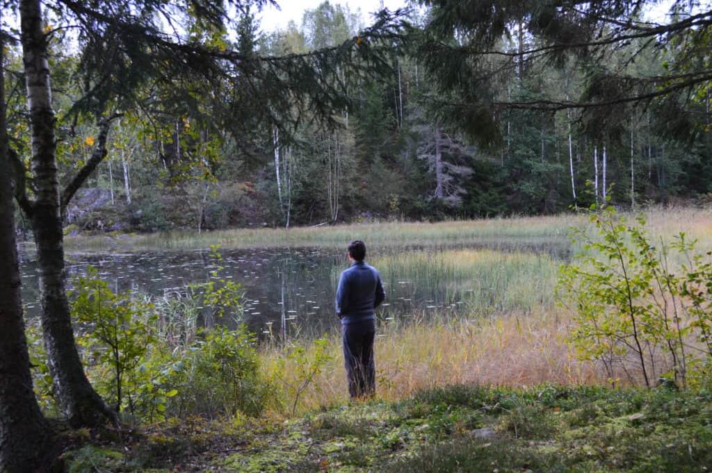 Wandelen door de Zweeds bossen - HappyHikers