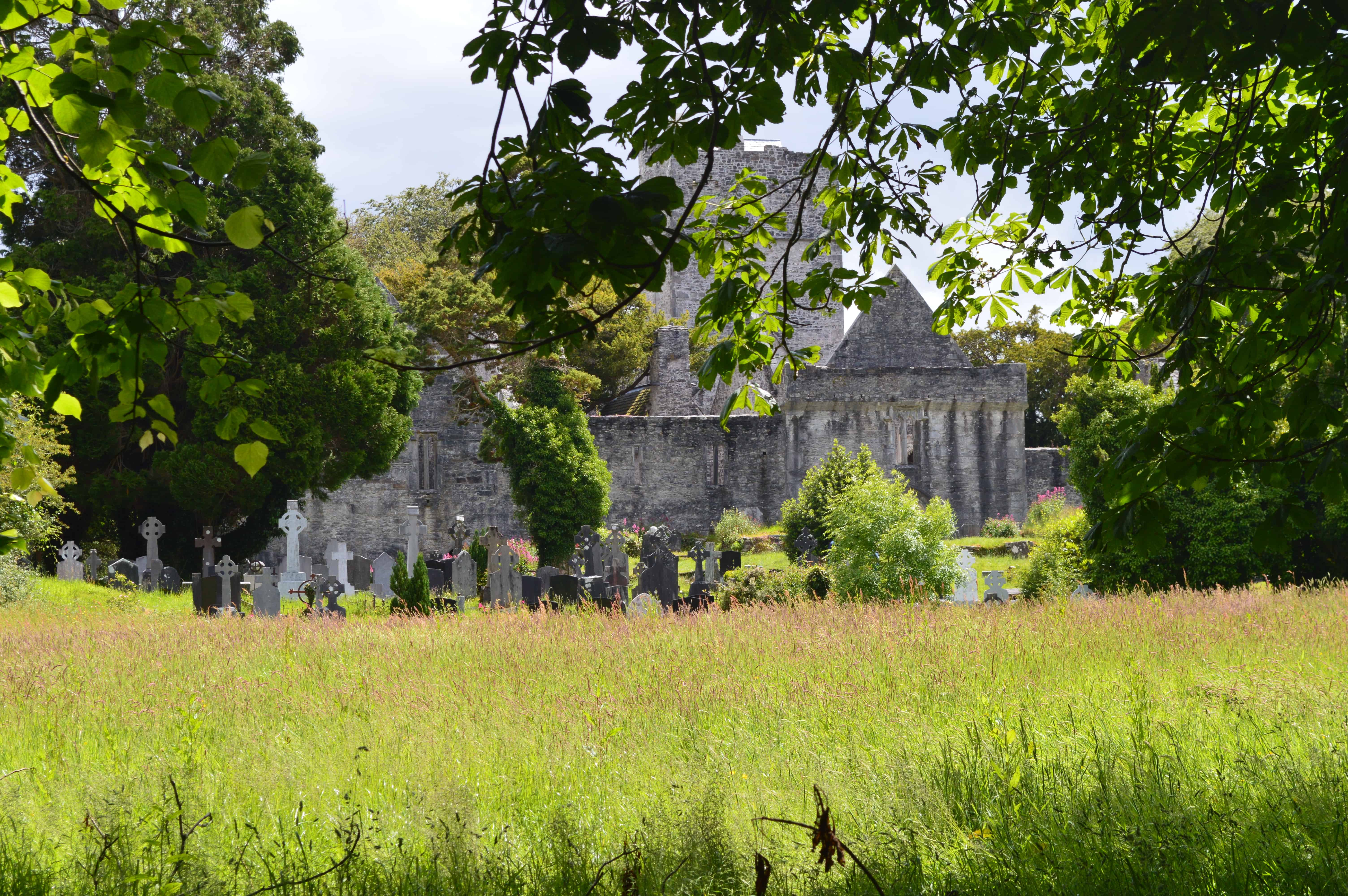 Muckross Abbey - Killarney Nationaal Park - HappyHikers