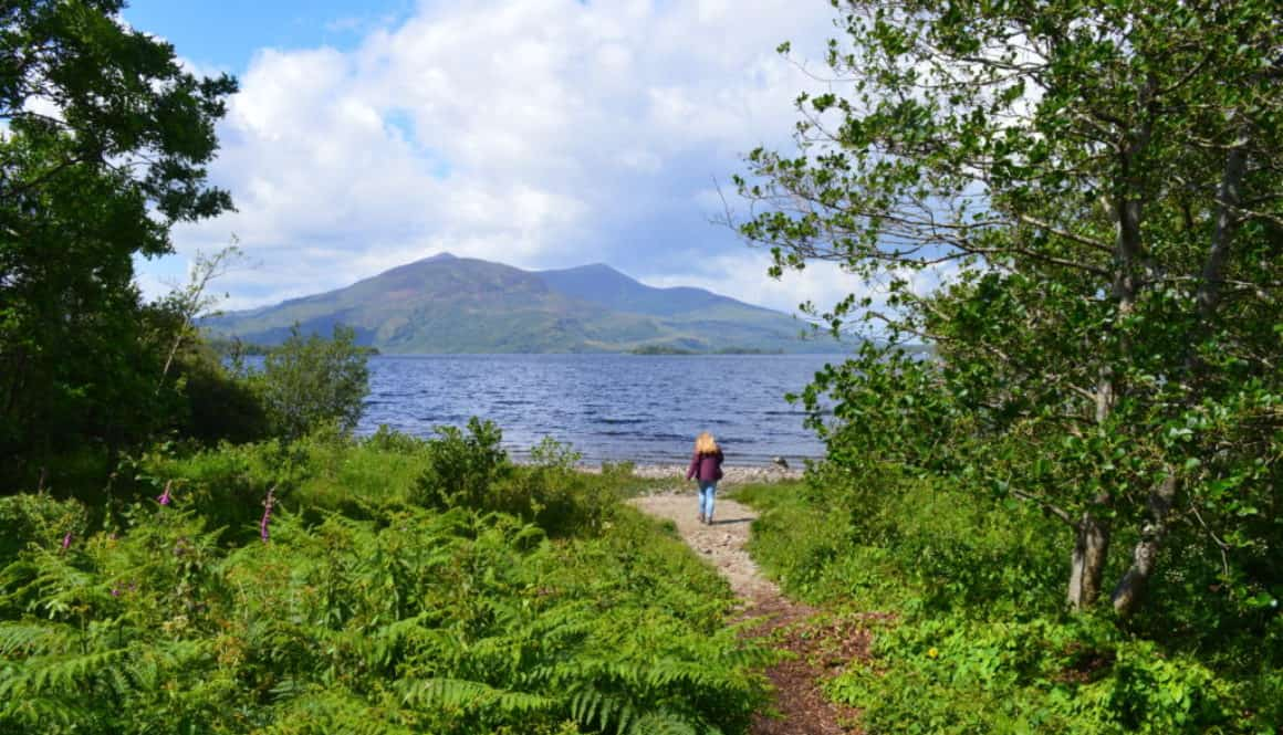 Purple mountain en Lough Leane - Killarney Nationaal Park - HappyHikers