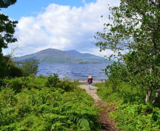 Purple mountain en Lough Leane - Killarney Nationaal Park - HappyHikers