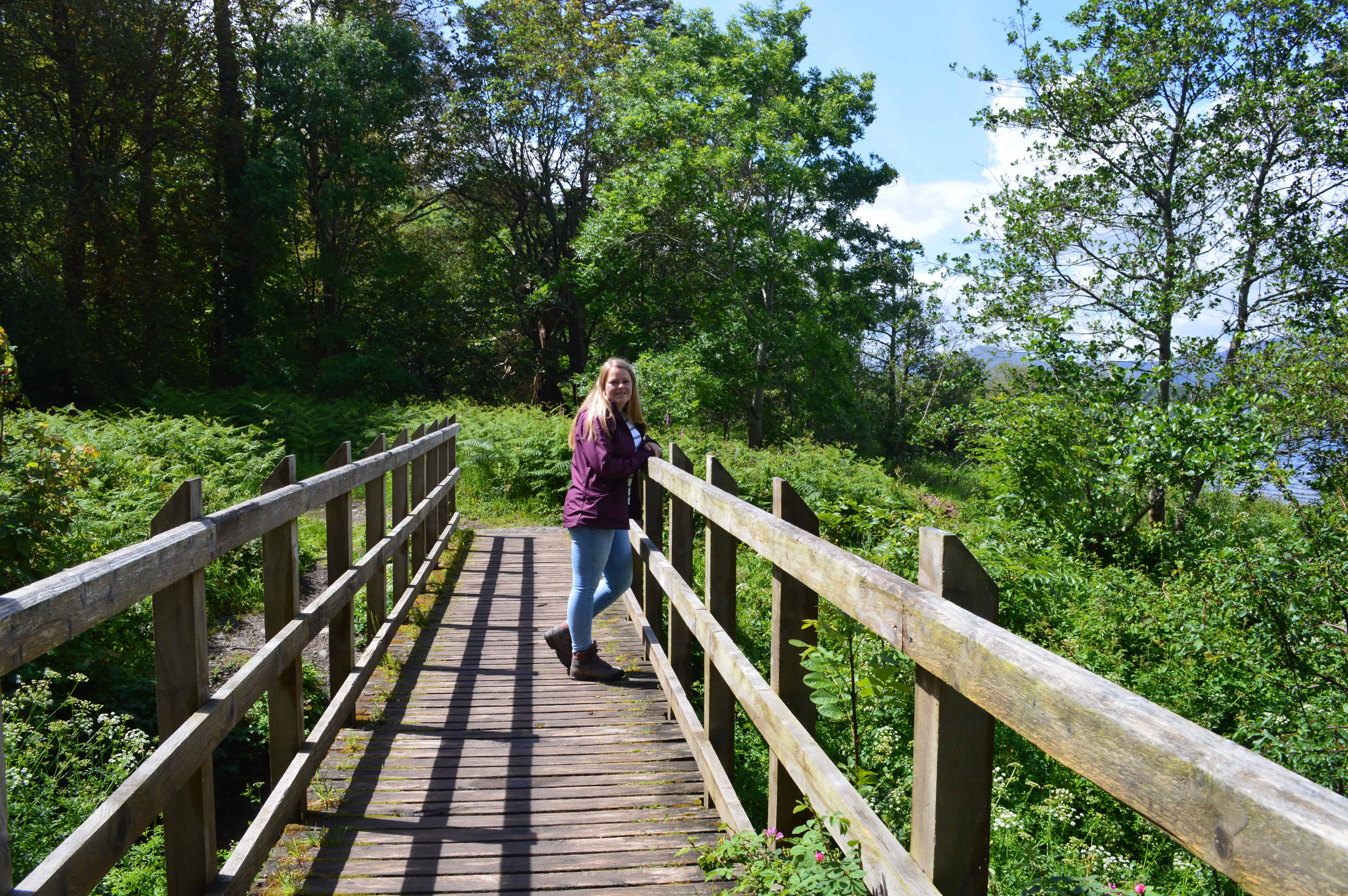 Wandelen in Killarney Nationaal Park - HappyHikers