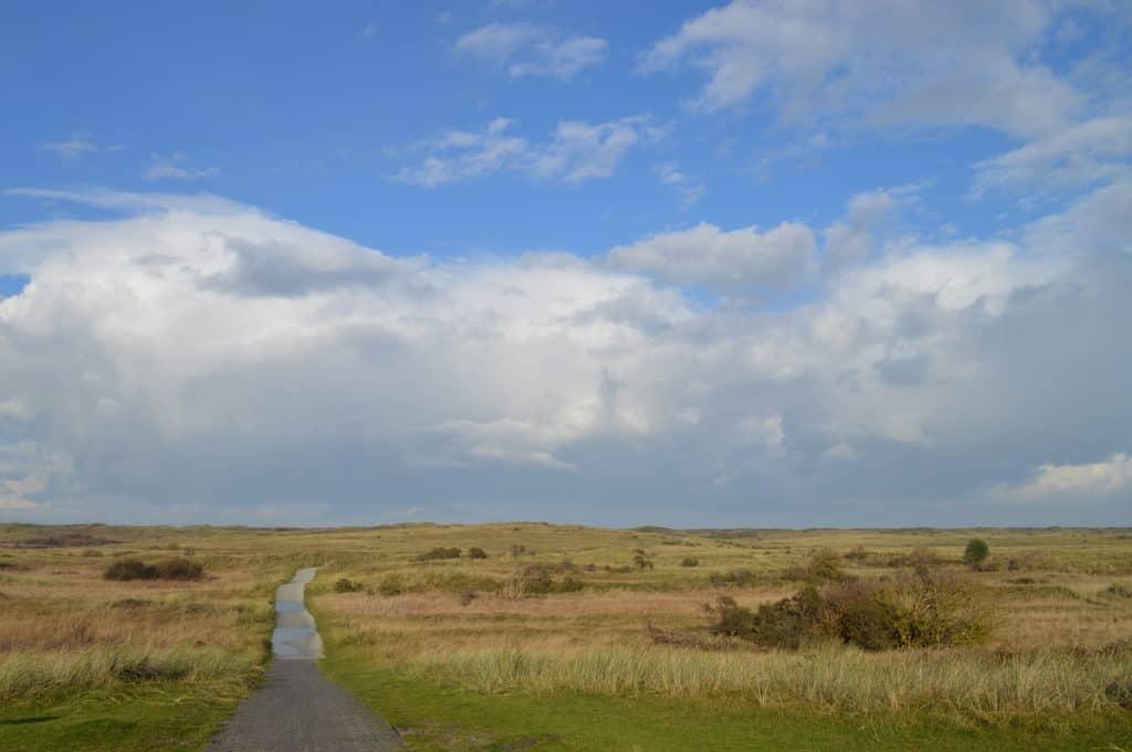 Lopen-naar-zee-Ameland-Roosduinen-en-Landweerdijk-HappyHikers
