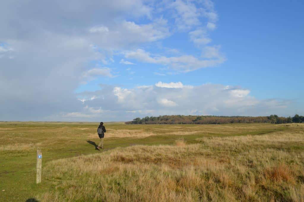 We-gaan-op-pad-Ameland-Roosduinen-en-Landweerdijk-HappyHikers
