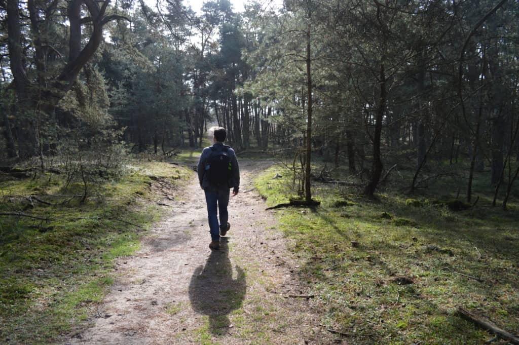 Wandelen door het bos - Deelerwoud - HappyHikers