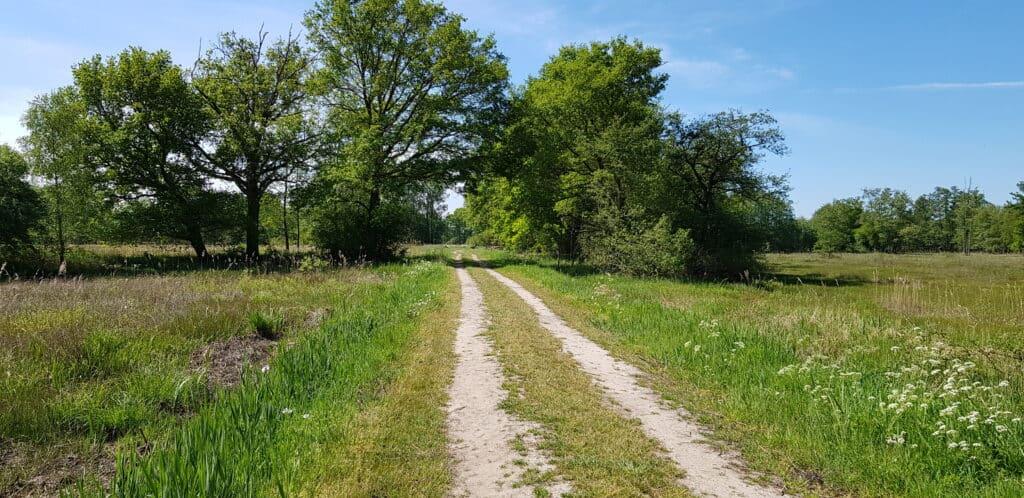 Natuurgebied Lampenbroek - het Klarenbeekse pad -klompenpaden - HappyHikers