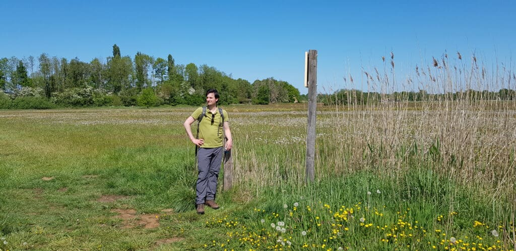 Wilde bloemen Natuurgebied lampenbroek - Klarenbeekse pad - Klompenpaden - HappyHikers