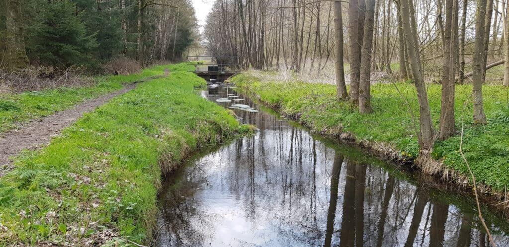 HappyHikers - Hanzestedenpad etappe 1 - Doesburg naar Brummen - Boerenland met beekjes